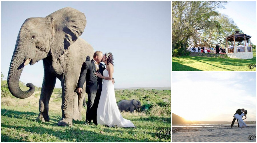 Inkwenkwezi Game Reserve South African Wedding Venues