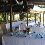 fynbos wedding