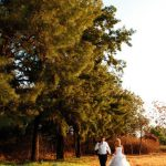 Everwood Wedding Venue
