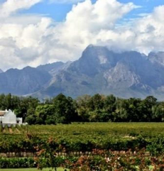 Wineland Wedding Venues with Amazing Views