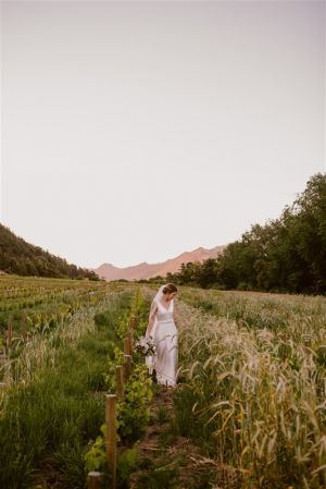 Rickety Bridge Bride In Vineyard
